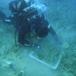 Field research – monitoring of the seagrass Posidonia oceanica.